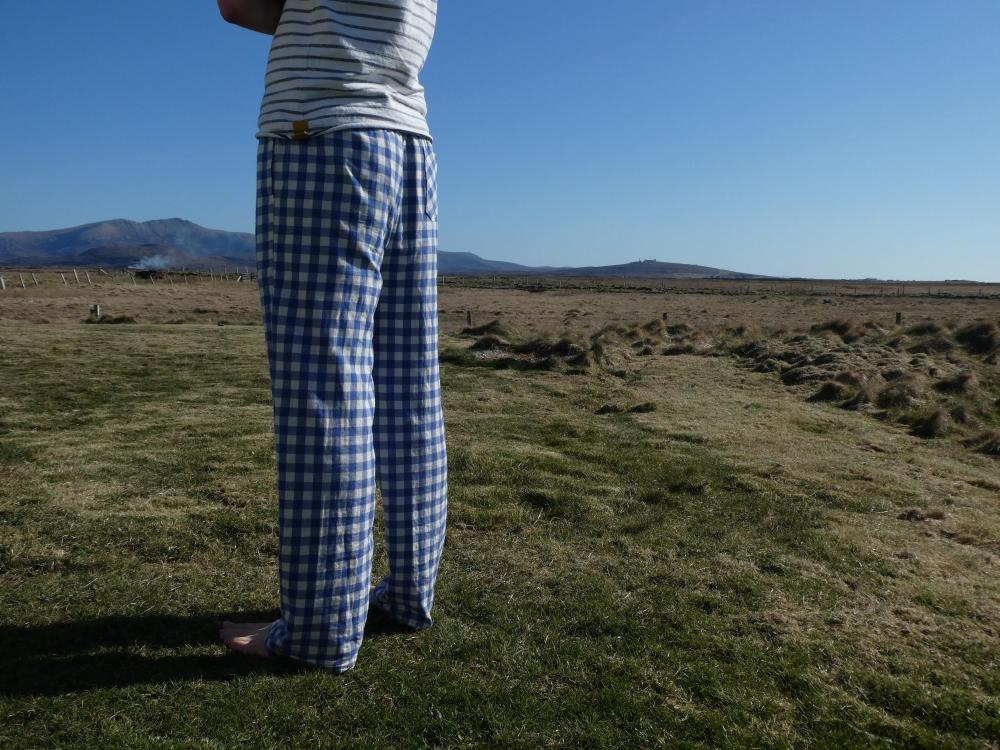 Eastwood pajamas Thread Theory www.heatherymakes.wordpress.com (12)