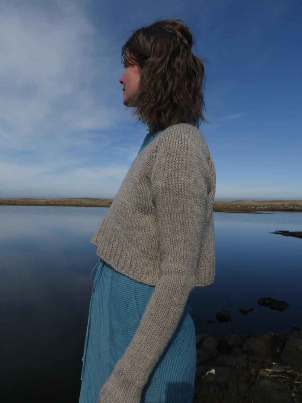 Ursa sweater Jacqueline Cieslak www.heatherymakes.wordpress.com (14)
